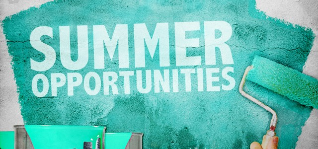 Image result for summer opportunities